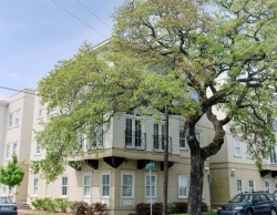Alice Hall Apartments Savannah Historic District Short Term Rentals