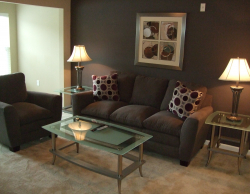Fully-Furnished & All-Inclusive Suwanee GA Apartment Rentals