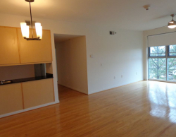 Fully-Furnished Apartment Living at Vista Lofts in Columbia SC